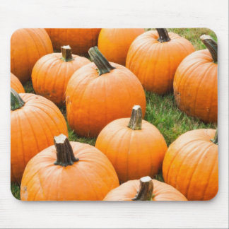 Pumpkins for Sale at a Farmer's Market Mouse Pad