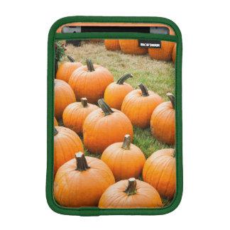 Pumpkins for Sale at a Farmer's Market Sleeve For iPad Mini
