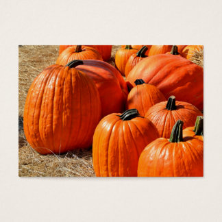 pumpkins for sale business card