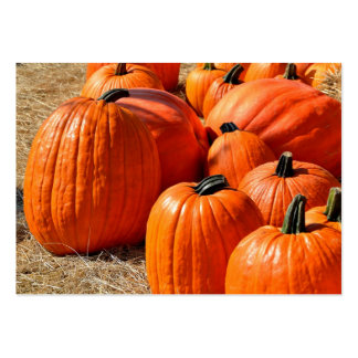 pumpkins for sale large business card