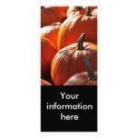 pumpkins! full color rack card