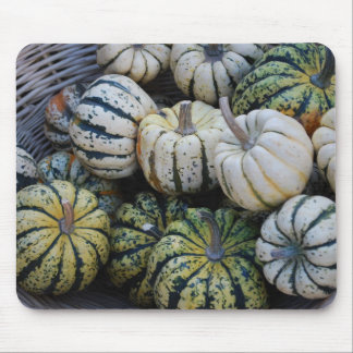 Pumpkins, Gourds, Fall Harvest Mouse Pad