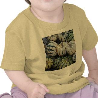 Pumpkins, Gourds, Fall Harvest T Shirt