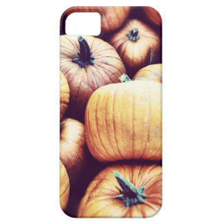 Pumpkins I Phone case