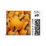 pumpkins in a pumpkin patch postage stamps