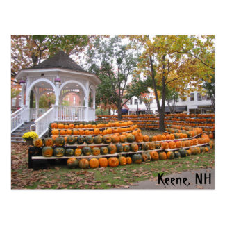 Pumpkins in Keene, NH Postcard