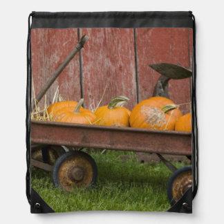 Pumpkins in old wagon drawstring bag