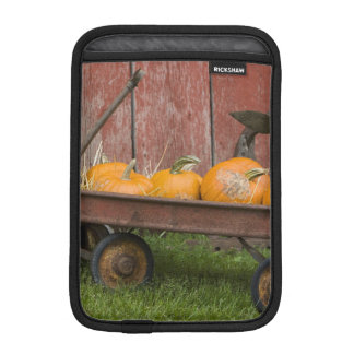 Pumpkins in old wagon iPad mini sleeve