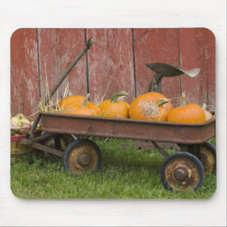 Pumpkins in old wagon mouse pad