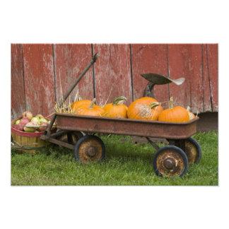 Pumpkins in old wagon photo print