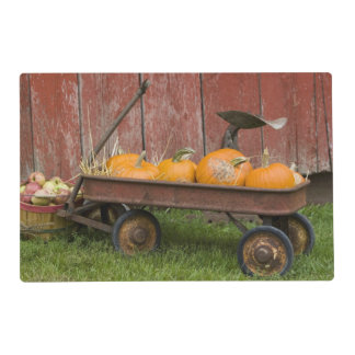 Pumpkins in old wagon placemat