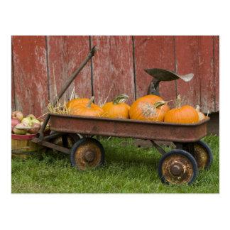 Pumpkins in old wagon postcard