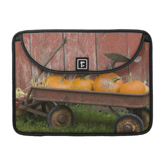 Pumpkins in old wagon sleeve for MacBooks