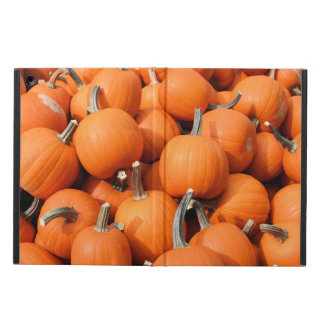 Pumpkins iPad Air Case