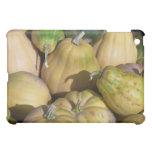 pumpkins iPad mini cover