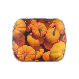 Pumpkins Jelly Belly Candy Tin