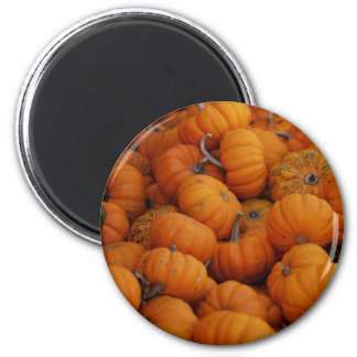 pumpkins 2 inch round magnet