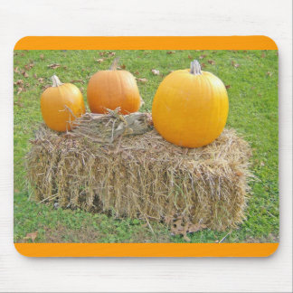 Pumpkins On A Haystack-updated Mouse Pad