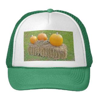 Pumpkins On A Haystack-updated Trucker Hat