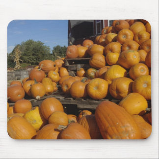 Pumpkins on farm in autumn near Concord, Mouse Pad