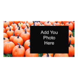 Pumpkins Photo Card