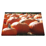 Pumpkins Photo for Fall, Halloween or Thanksgiving Canvas Print