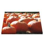 Pumpkins Photo for Fall, Halloween or Thanksgiving Canvas Print