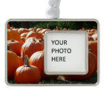 Pumpkins Photo for Fall, Halloween or Thanksgiving Christmas Ornament