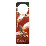 Pumpkins Photo for Fall, Halloween or Thanksgiving Door Hanger