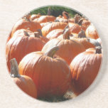 Pumpkins Photo for Fall, Halloween or Thanksgiving Drink Coaster