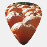 Pumpkins Photo for Fall, Halloween or Thanksgiving Guitar Pick