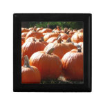 Pumpkins Photo for Fall, Halloween or Thanksgiving Jewelry Box
