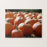 Pumpkins Photo for Fall, Halloween or Thanksgiving Jigsaw Puzzle