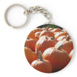 Pumpkins Photo for Fall, Halloween or Thanksgiving Keychain