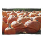 Pumpkins Photo for Fall, Halloween or Thanksgiving Kitchen Towel