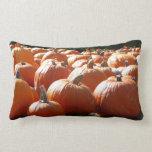 Pumpkins Photo for Fall, Halloween or Thanksgiving Lumbar Pillow
