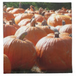 Pumpkins Photo for Fall, Halloween or Thanksgiving Napkin