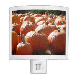 Pumpkins Photo for Fall, Halloween or Thanksgiving Night Light
