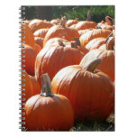 Pumpkins Photo for Fall, Halloween or Thanksgiving Notebook