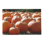 Pumpkins Photo for Fall, Halloween or Thanksgiving Placemat