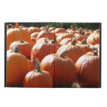 Pumpkins Photo for Fall, Halloween or Thanksgiving Powis iPad Air 2 Case