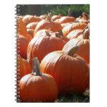 Pumpkins Photo for Fall, Halloween or Thanksgiving Spiral Notebook