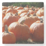 Pumpkins Photo for Fall, Halloween or Thanksgiving Stone Coaster