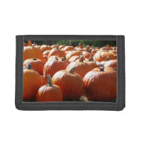 pumpkins photo for fall halloween or thanksgiving womens wallets