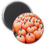Pumpkins Refrigerator Magnets