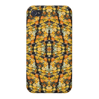 Pumpkins, Squash, and Gourds - Abstract iPhone 4/4S Cases