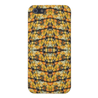 Pumpkins, Squash, and Gourds - Abstract iPhone 5 Case