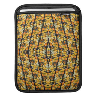 Pumpkins, Squash, and Gourds - Abstract Sleeve For iPads