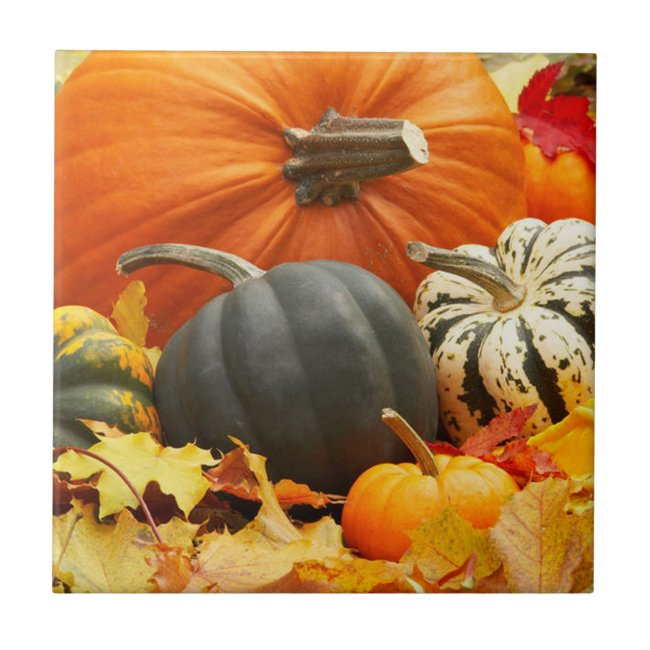 Pumpkins Tile Trivet