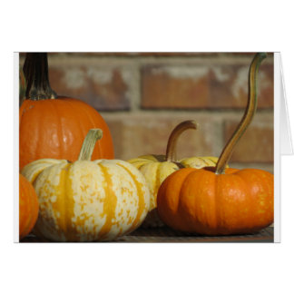 pumpkins variety,fall,brick,stripe pumpkin card